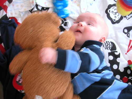 Here I'm attacking the Teddy bear Eli sent.